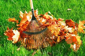 4 Seasons Landscape Services provides comprehensive lawn maintenance, leaf removal and full clean-up services to residential and property owners in Redding, Calfiornia.