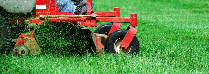 4 Seasons Landscape Services provides comprehensive lawn maintenance, Core Aerating, Overseeding and clean-up services to residential and property owners in Redding, Calfiornia.