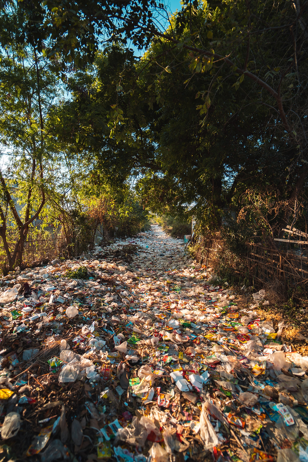An image of trash covering an entire river