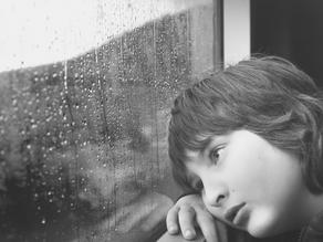 ATELIER FLEURS DE BACH : COMMENT ACCOMPAGNER LES ÉMOTIONS DE VOS ENFANTS