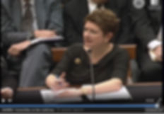 Image of Nancy Mertzel testifying before Congress.