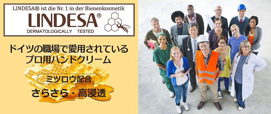 LINDESA/ドイツの職場で愛用されているプロ用ハンドクリーム