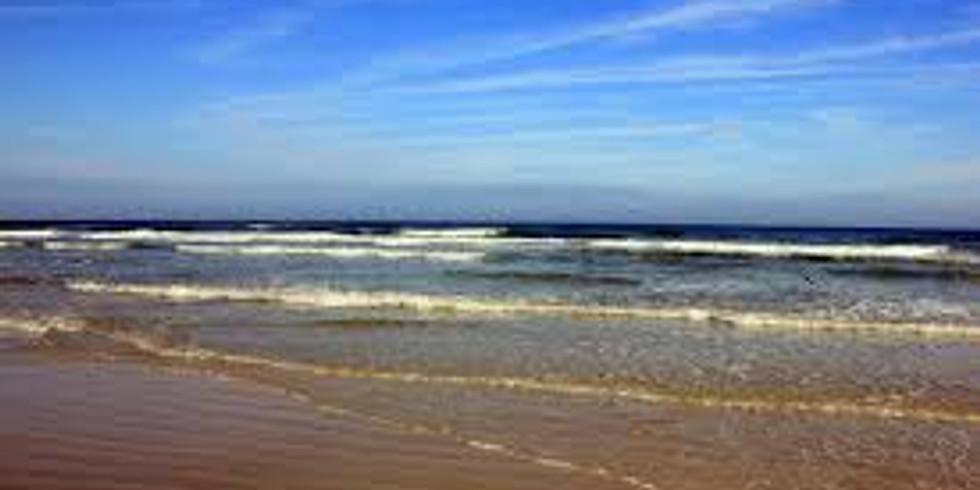 Daytona Beach Getaway: February 15 – March 1, 2020.
