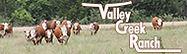 Valley Creek Ranch.jpg