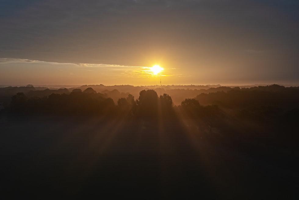 ochtend zon.jpg