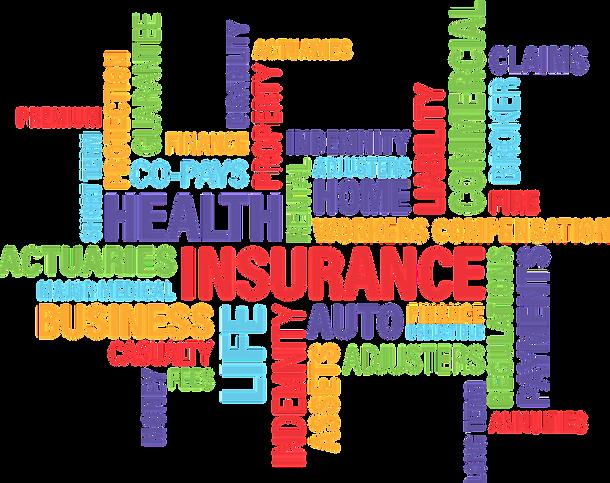 insurance-indemnity-wordsalad.png