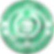 honor-shiny-web.png