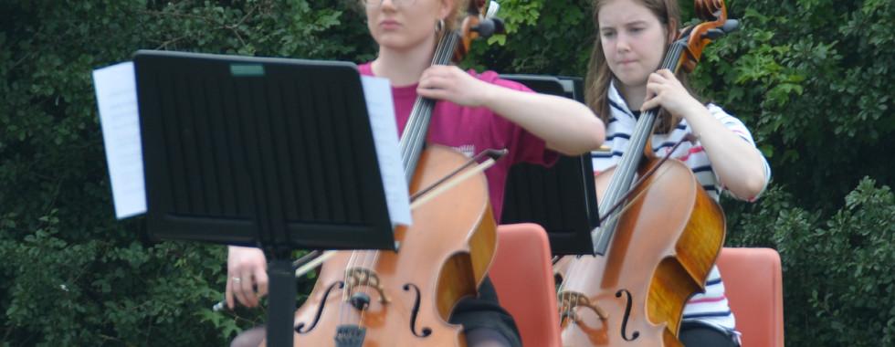 Glyn's field Inspire cellos.jpg