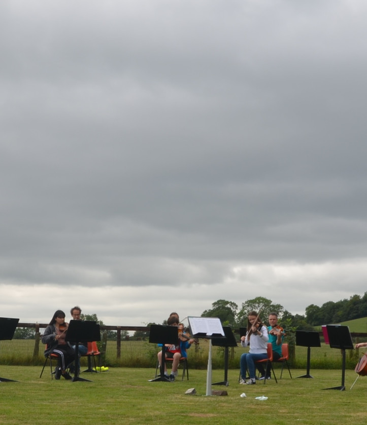 Glyn's field Intermediate 11.jpg