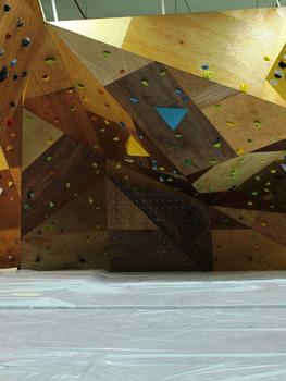 Wood Panel Bouldering Wall