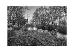 Woodberry Wetlands 5