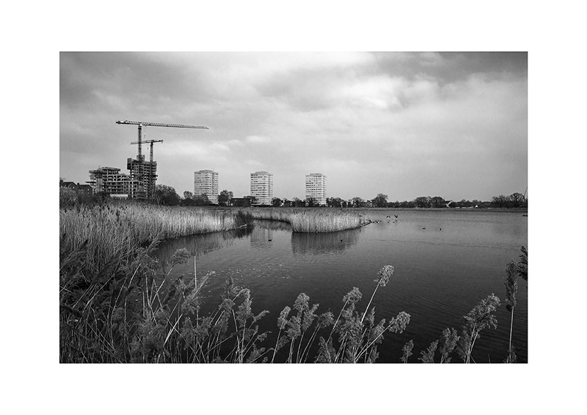 Woodberry Wetlands 3