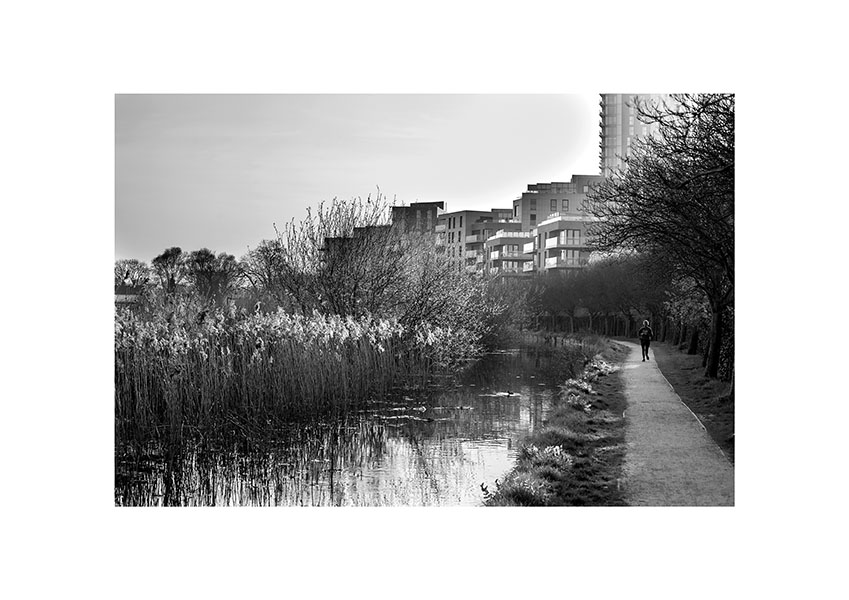Woodberry Wetlands 7