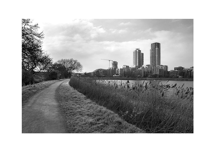Woodberry Wetlands 2