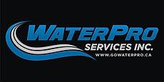 WPro on Black - Master Logo.jpg