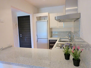 EC-Apt-Kitchen-3.jpg