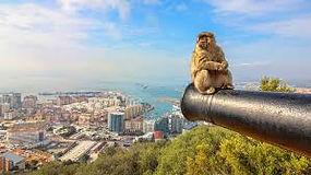 Affe-auf-Kanone-Gibraltar.jpg