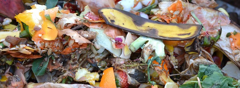 composting tips