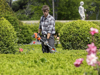 Hedge Trimmer Tips: Make the Most of your Equipment