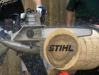 Timbersports - The Basics