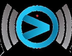 VSN logo3.png