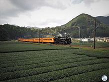 Oigawa railway.jpg