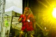 Tingvalla Festivalen 2014 115.jpg