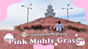 """10 สถานที่ชม """"Pink Muhly Grass"""" ในเกาหลี"""