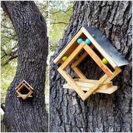 Kiwi Viv Woodcraft