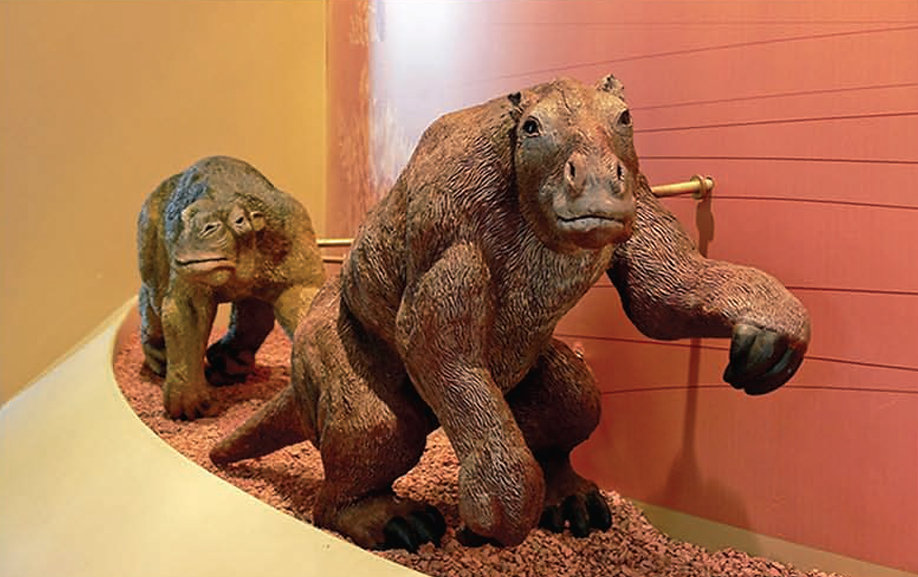 Paleontologia: Animais do Brasil