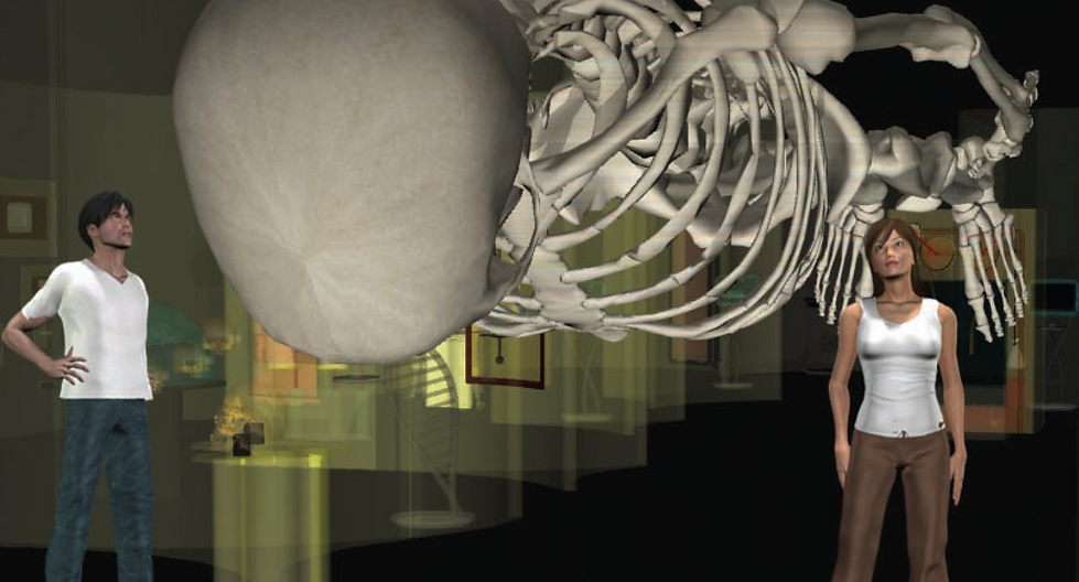Corpo Humano Esqueleto