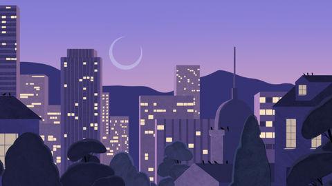 Google Nest Hub: Sleep Sensing