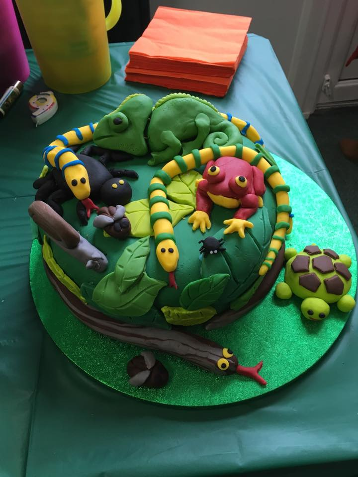 animal encounter party cakes