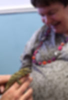 animal encounter animals as therapy disability group