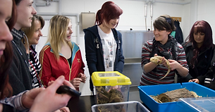 college animal encounter visit workshop exotic animals