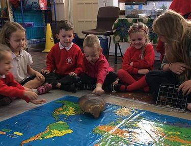 animals school visit encounters