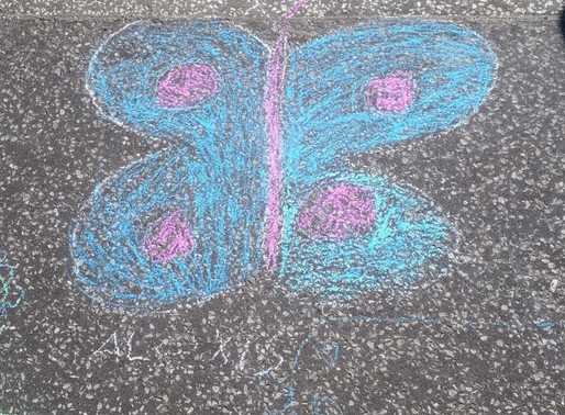 Butterflies make us smile !