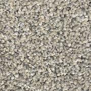 Carpet Sandy Trail.jpg