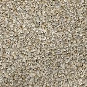 Carpet Rhinestone.jpg