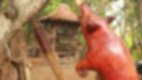 North Bali authentic babi guling by Pengalaman Rasa
