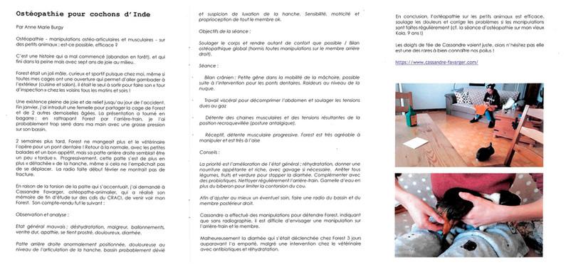 Gazette du CRACI - été 2019