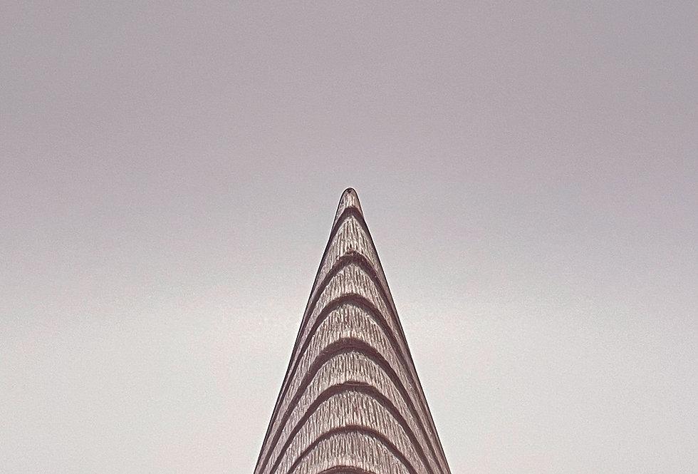 i-cône Séquoia blanchi