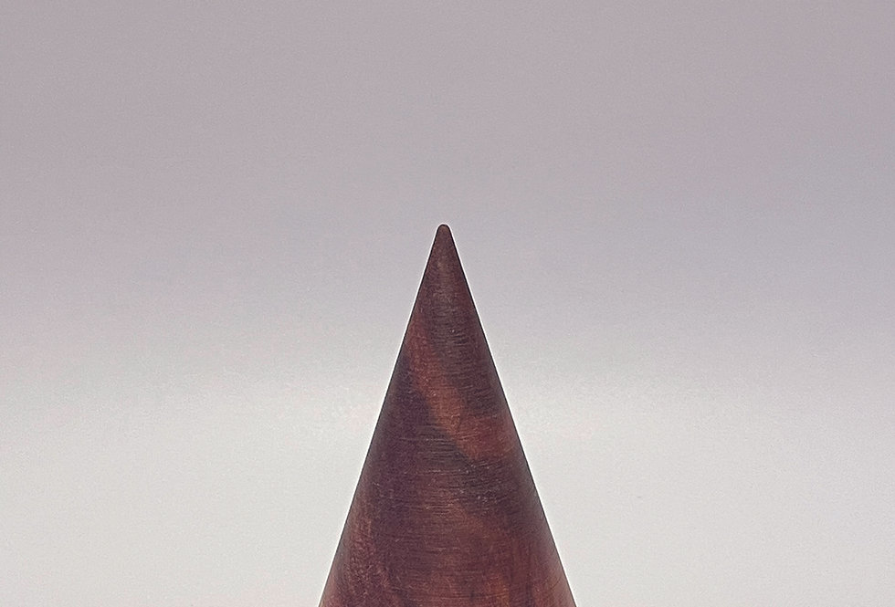 i-cône Prunier