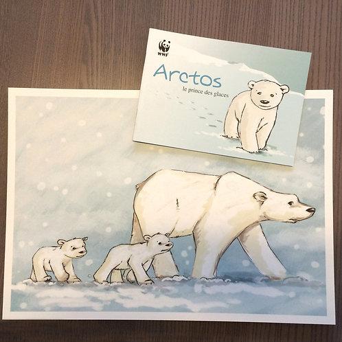 "Planches Kamishibaï ""Arctos, le prince des glaces"""