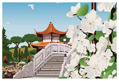Postcard - 4x6 - Japanese Garden