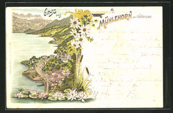 Mühlehorn_about_1900