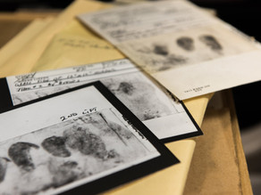 Genealogy Tools Can Help To Solve Unresolved Criminal Cases