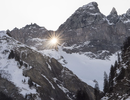 """Neue hochalpine Moosart in Glarus entdeckt: """"Martinsloch-Spalthütchen"""""""