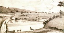 Litografia da fazenda Ibicaba