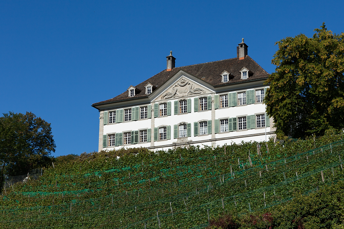 Mollis Haltli Manor